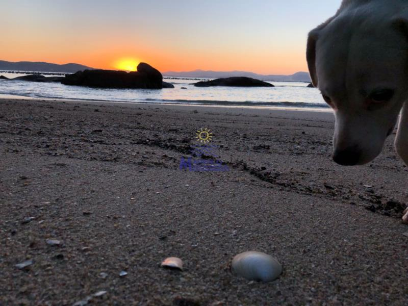 Praia pôr do sol