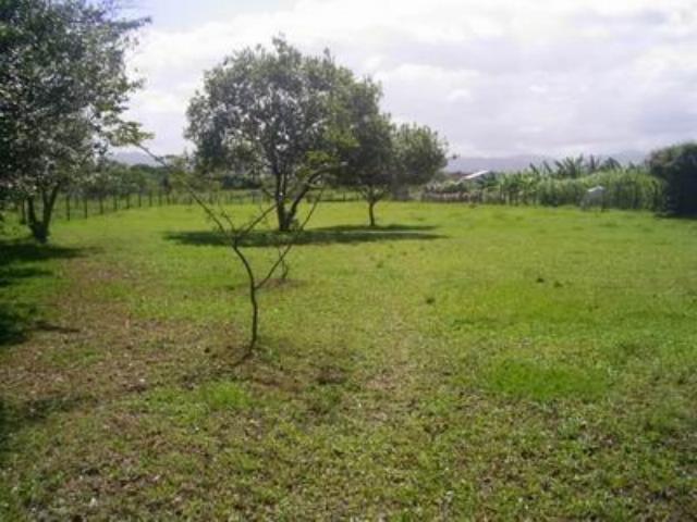 Terreno Código 385 a Venda no bairro Barra do Aririú na cidade de Palhoça Condominio
