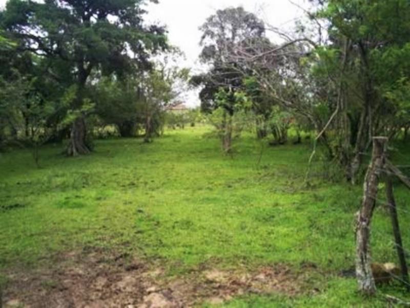 Terreno Código 415 a Venda no bairro Barra do Aririú na cidade de Palhoça Condominio
