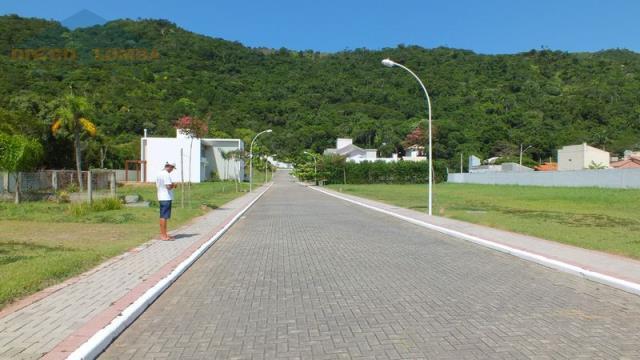 Rua do condominio em direção ao morro