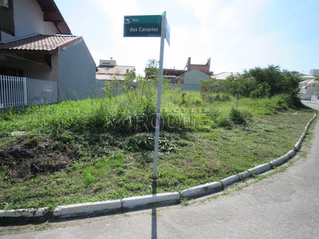 Terreno - Código 1244 Imóvel a Venda no bairro Cidade Universitária Pedra Branca na cidade de Palhoça