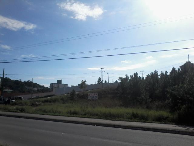 Terreno - Código 1211 Aluguel Anual  no bairro Areias na cidade de São José