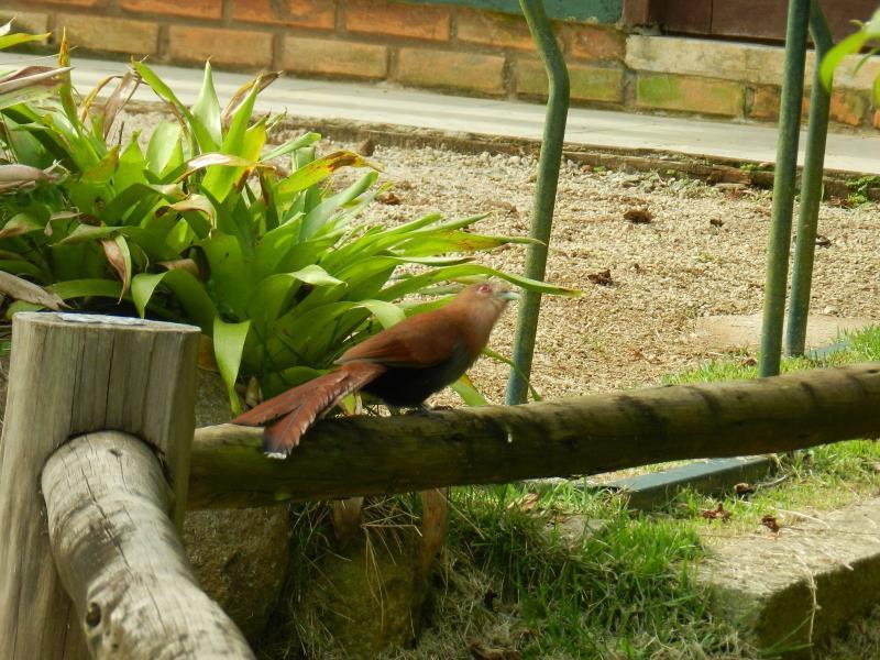 Terreno - Código 802 a Venda no bairro Centro na cidade de Florianópolis - Condomínio TERRENO MORRO DA CRUZ