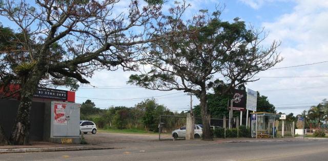 Terreno-Codigo-222-a-Venda-no-bairro-Campeche-na-cidade-de-Florianópolis