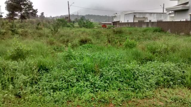 Terreno-Codigo-501-a-Venda-no-bairro-São-João-do-Rio-Vermelho-na-cidade-de-Florianópolis