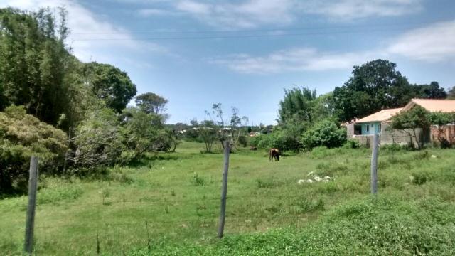 Terreno-Codigo-733-a-Venda-no-bairro-São-João-do-Rio-Vermelho-na-cidade-de-Florianópolis