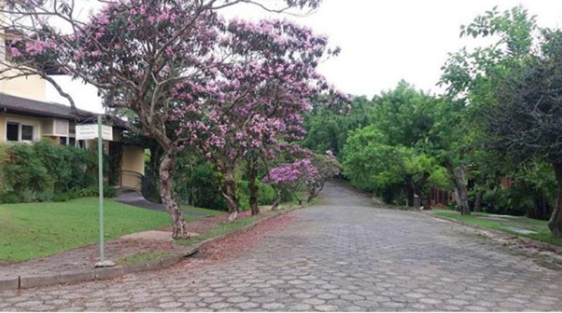 Terreno-Codigo-917-a-Venda-no-bairro-Rio-Tavares-na-cidade-de-Florianópolis