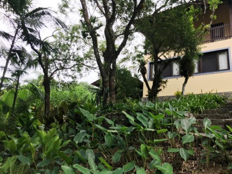 Casa-Codigo-1060-a-Venda-no-bairro-Lagoa-da-Conceição-na-cidade-de-Florianópolis