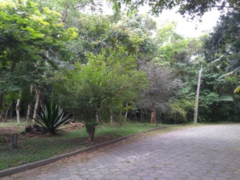 Terreno-Codigo-1270-a-Venda-no-bairro-Rio-Tavares-na-cidade-de-Florianópolis