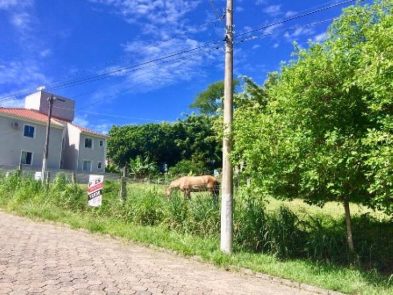 Terreno-Codigo-1290-a-Venda-no-bairro-Lagoa-da-Conceição-na-cidade-de-Florianópolis