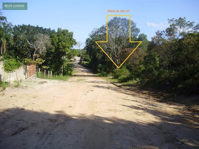 5 - FRENTE PELA AVENIDA AMAZONAS