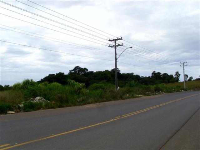Terreno-Codigo 821-a-Venda-no-bairro-Linha Batista-na-cidade-de-Criciúma