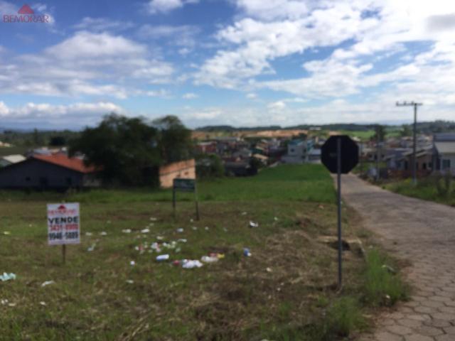 Terreno-Codigo 6031-a-Venda-no-bairro-Tereza Cristina-na-cidade-de-Içara