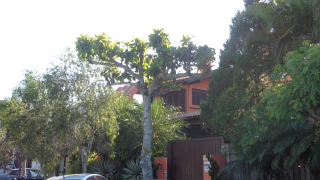 Casa Código 9683 para Temporada no bairro Jurerê Internacional na cidade de Florianópolis