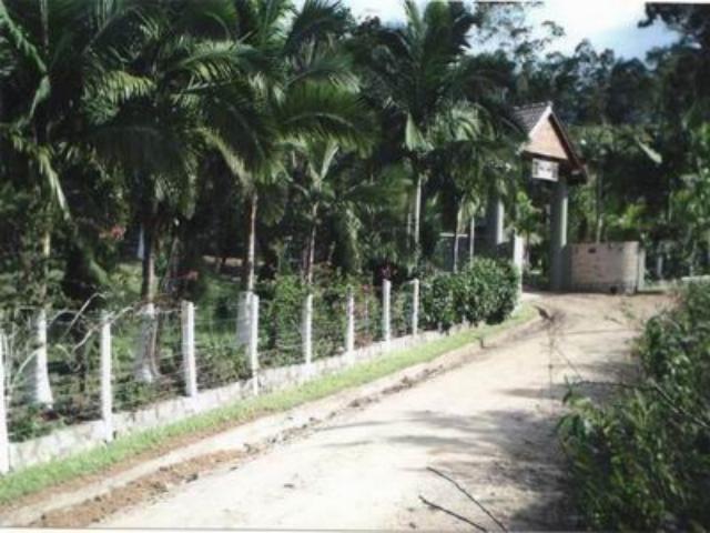 Sítio Código 292 a Venda no bairro Vila Santana na cidade de Santo Amaro da Imperatriz Condominio
