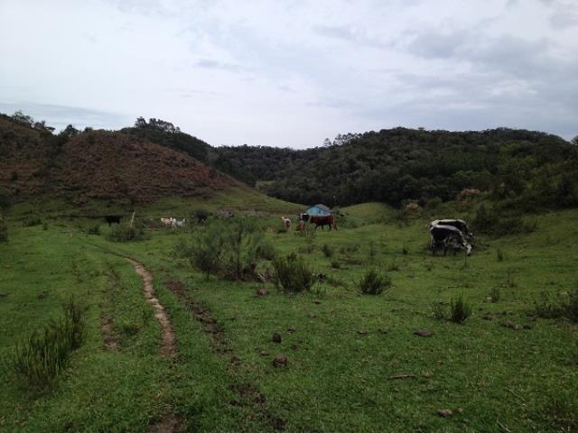 Sítio Código 2887 a Venda no bairro Rio Miguel - Morro do Cedro na cidade de Rancho Queimado Condominio