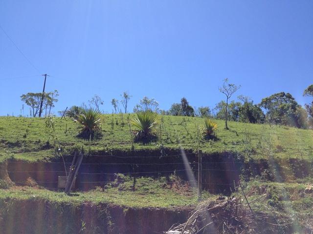 Terreno Código 2979 a Venda no bairro Varginha na cidade de Santo Amaro da Imperatriz Condominio