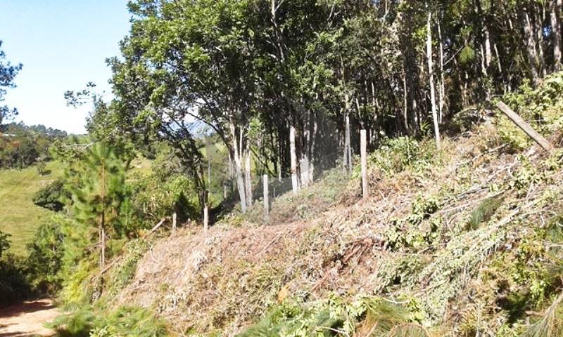 Terreno Código 3872 a Venda no bairro Centro na cidade de Santo Amaro da Imperatriz Condominio
