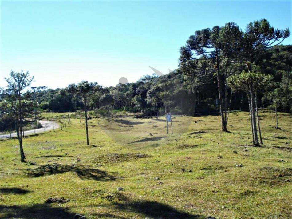 Terreno Código 4413 a Venda no bairro Queimada Grande na cidade de Rancho Queimado Condominio