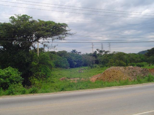 Terreno-Codigo-110-a-Venda-no-bairro-Campeche-na-cidade-de-Florianópolis