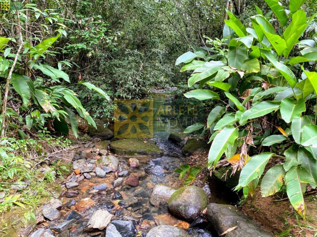 Sítio-Codigo-3939-a-Venda-no-bairro-Sertão-do-Valongo-na-cidade-de-Porto-Belo